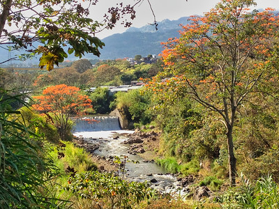Water dam with colorful flowers along the river