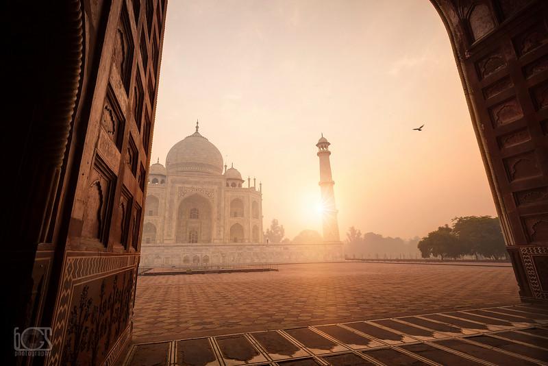 Morning at the Taj