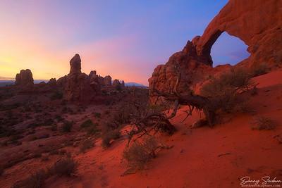 Arches Landscape