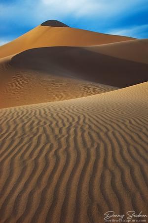Elegant Dunes