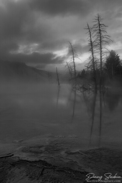 Geothermal springs and subfreezing temperatures produce large quantities of steam, giving this landscape an eerie look.