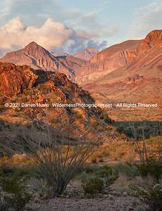 Big Bend Desert Mountains