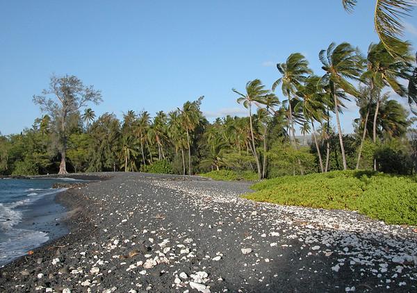 Along the shoreline of Kiholo Bay (west) - Kohala district