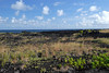Across the 1990 lava flow field, along the trail to the New Kaimu Black Sand Beach - Puna district