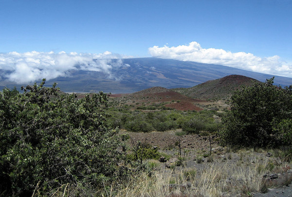 Across mid mountain of Mauna Kea Volcano - across to the ridge of Mauna Loa Volcano - Hamakua district