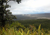 Beyond the Lacy Spleenwort (Asplenium horridum), a forb (plant without significant woody tissue) and an 'Ohi'a Tree - down to the Kilauea Caldera, located at about 4,000 ft. (1,219 m) elevation - the caldera was formed by the collapse of land following the draining of the magma chamber - Halema'uma'u Crater within the caldera, is seen in the distance - Hawaii Volcanoes National Park.