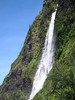 Kaluahine Waterfall - a ribbon or chute falls, dropping about 600 ft. (183 m) along the Hamakua coastline, just south of the Waipi'o Valley - Hamakua district