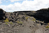 Along the Napau Crater Trail - the Manau Ulu Shield (northern flank) - Upper East Rift - Hawaii Volcanoes National Park