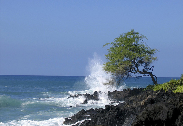 Waves breaking upon the Kohala coastline, south of Hapuna Beach - Kohala district