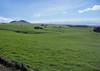 Grassland pastures of the Kohala Volcano