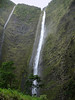 Hi'ilawe Falls, dropping 1,450 ft. (442 m), with a 1,200 ft. (366 m) vertical drop - the tallest waterfalls on the island - with the Hakalaoa Falls on the left - Waipi'o Valley - Kohala district