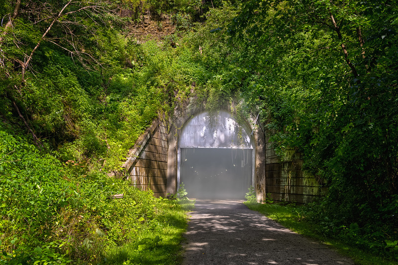 Fog Tunnel