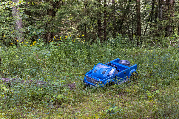 Abandoned on Sandy Creek