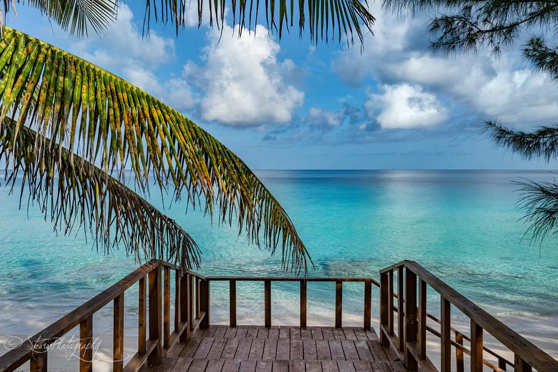 Paradise - Bimini, Bahamas, 2018