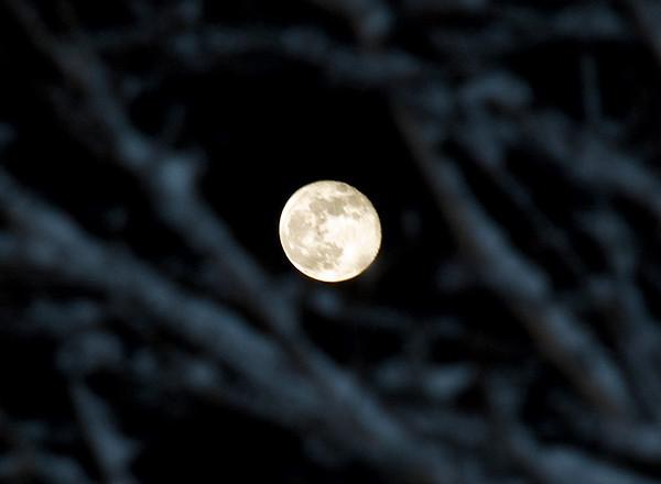 "<div class=""jaDesc""> <h4> Almost Full Moon on a Snowy Night</h4> </div>"