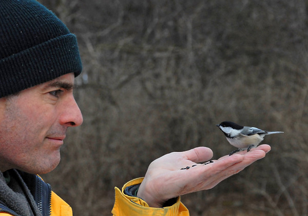 "<div class=""jaDesc""> <h4>Jeff Greets Chickadee in Hand - January 30, 2012 </h4> <p> I took a trip to Amherst Island, Ontario again this year with my birding friend Jeff. We couldn't resist another visit to the Chickadees in Owl Woods. They were just as bold and friendly as last year.</p> </div>"