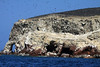 Sea-arch and caves, with colonies of Guanay Cormorants and Peruvian Booby - Islas Ballestas.