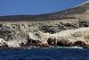 From the wave breaking against the rock shoreline of Islas Ballestas - to the Peruvian Booby and Guanay Cormorants above - Ica department.