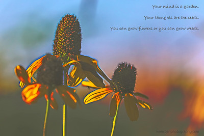 5DM40696-53-Edit_topaz_glow_bliss_poem