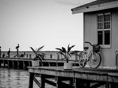 Beach Cruiser on the Dock ~ Belize