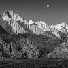 _MG_9706-7-8_BW_version2