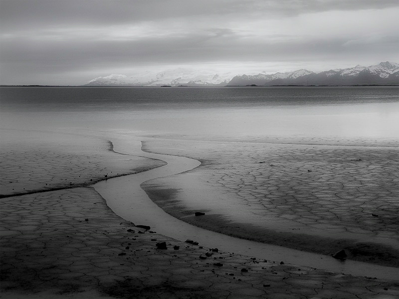 Mud flats at low tide. Near Höfn, Iceland