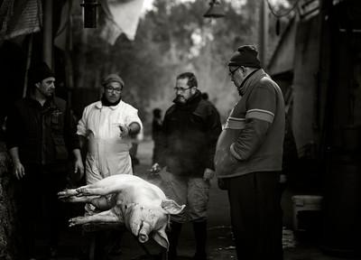 Pig slaughter II