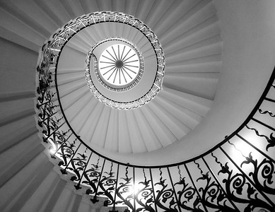 Tulip Spiral Staircase