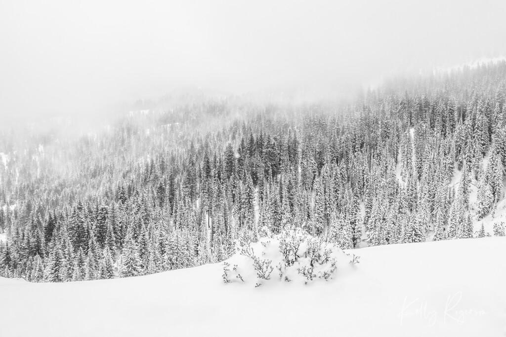 On Winter's Edge