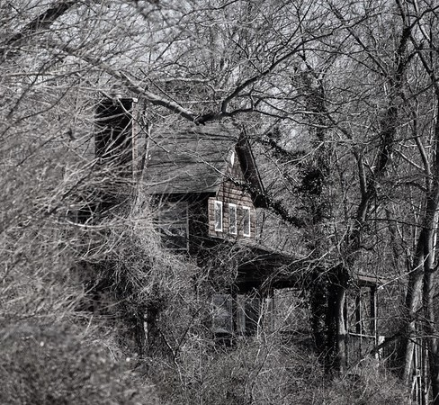 House In The Brush