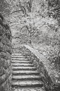 Where The Stairs Take You