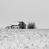Winter Homestead: B&W