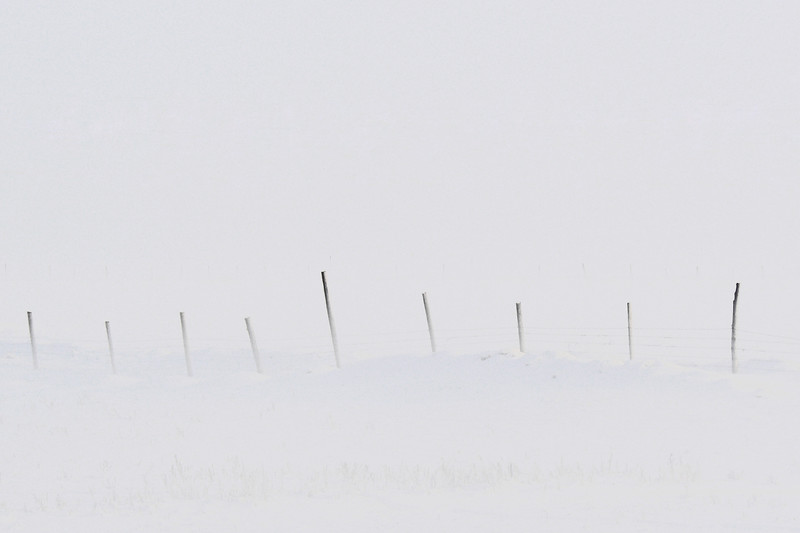 Snow blowing through a fence near Ashton, Idaho