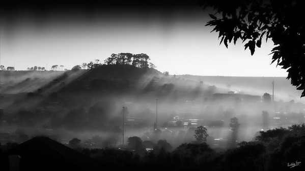 Misty Morning Makana's Kop