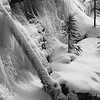 Frozen In Time Black and White