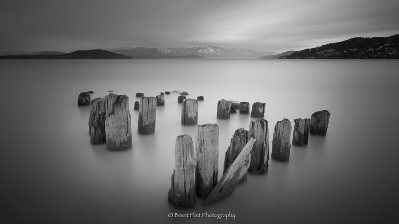 DF.5326 - pilings at Humbird Mill ruins, Sandpoint, ID.