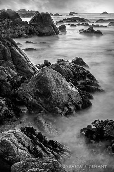 Pacific Grove seashore 2