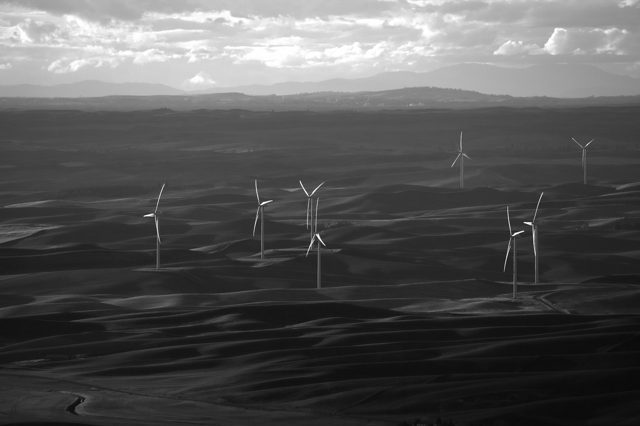 Windmills, The Palouse, Eastern Washington,Black and White