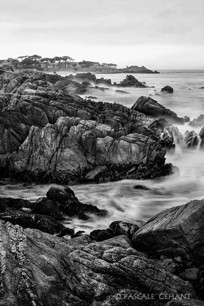 Pacific Grove seashore 1
