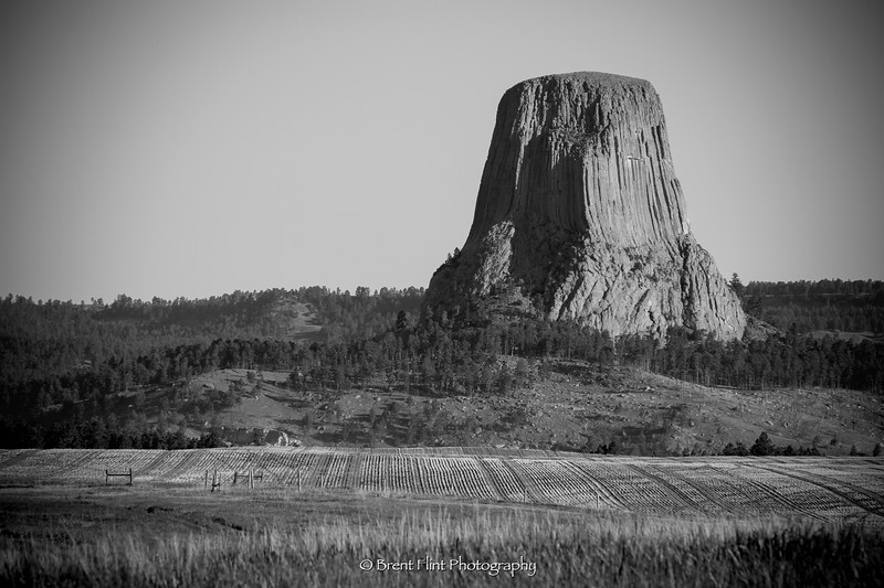 DF.4275 - Devil's Tower National Monument, WY.