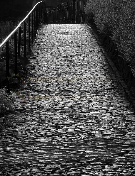 A path in Edinburgh.