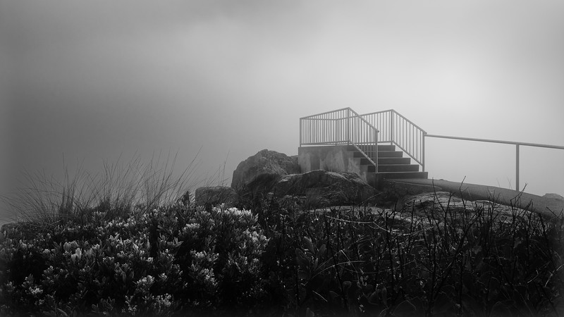 Mersey Bluff Lookout Black and White 1