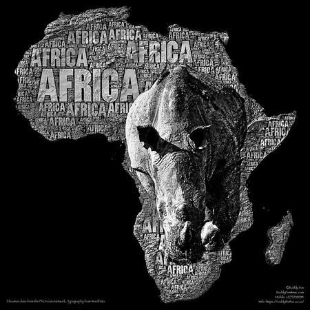 Africa Rhino