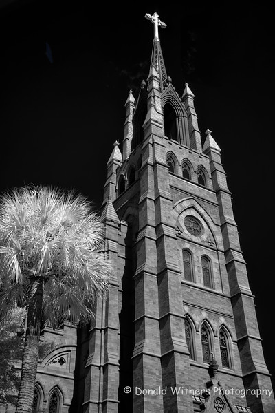 Cathedral of St. John the Baptist - Charleston, SC