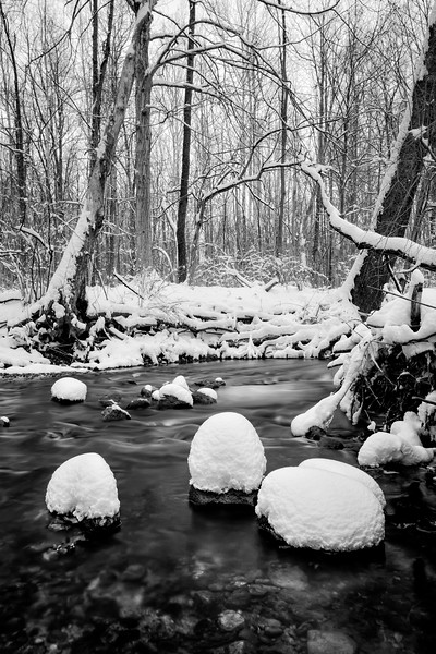 Cool Creek Winter