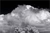 Approaching Storm, Edith Morley Park,  April 13, 2017  . . . [7D-IR-2017-7764]