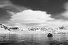 Antarctic. John Chapman.