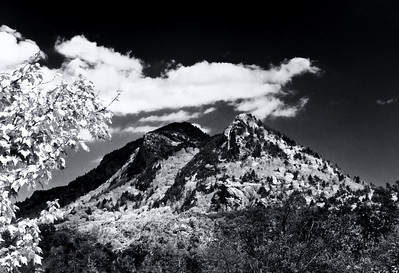 Grandfather Mountain in B&W