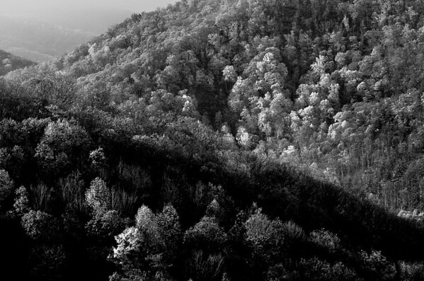 Unicoi Mountains