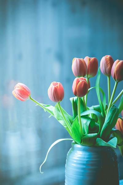 Tulip Blues
